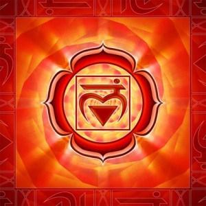 Chakra 1, het chakra dat ons fysieke lichaam goed laat functioneren