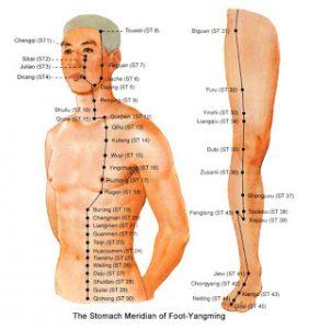 De Maagmeridiaan die over buik en borst loopt