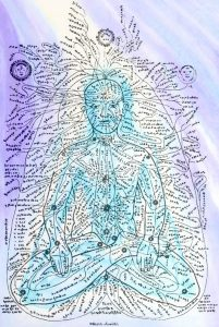 Kaart van de Nadi's van de mens